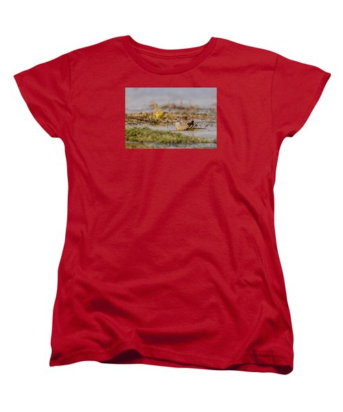 Women's T-Shirt (Standard Cut) featuring the photograph Yellow Crowned Wagtail Juvenile Bath Time by Jivko Nakev