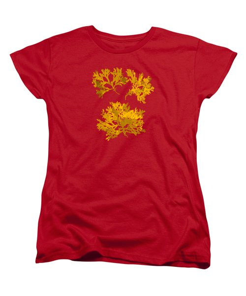 Women's T-Shirt (Standard Cut) featuring the mixed media Yellow Gold Seaweed Art Delesseria Alata by Christina Rollo