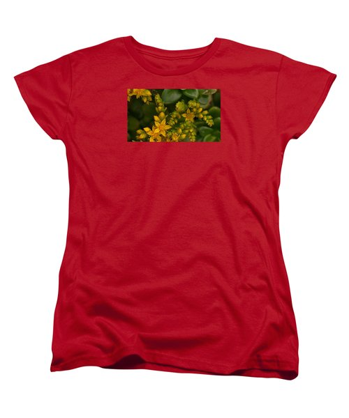 Yellow Sedum Women's T-Shirt (Standard Cut) by Richard Brookes