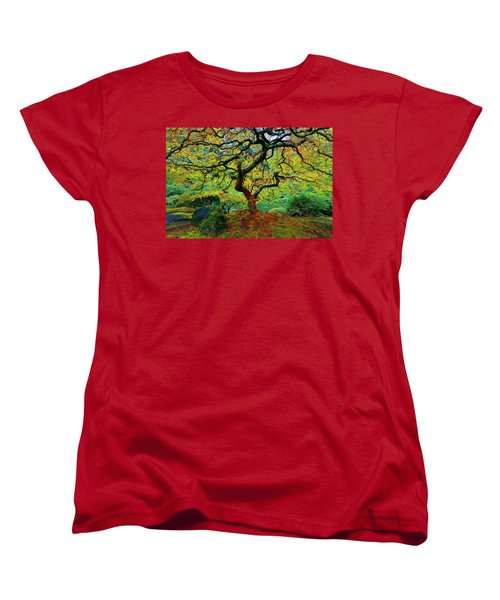 Zentastick Women's T-Shirt (Standard Cut) by Jonathan Davison