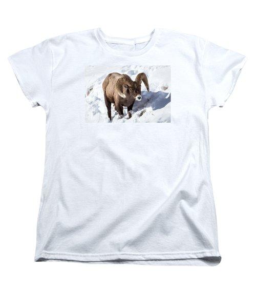 Bighorn Sheep Women's T-Shirt (Standard Cut)