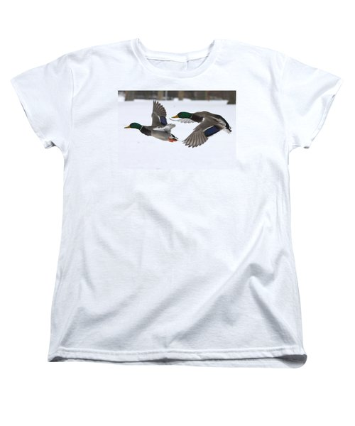 The Great Race Women's T-Shirt (Standard Cut) by John Telfer