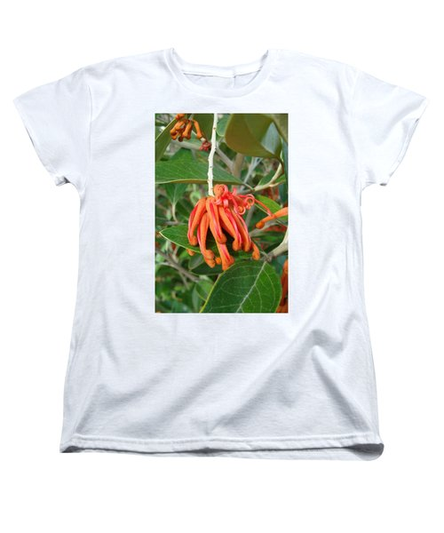 Women's T-Shirt (Standard Cut) featuring the photograph Adaptable Exotic by Cheryl Hoyle