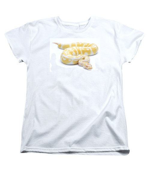 Albino Royal Python Women's T-Shirt (Standard Cut) by Michel Gunther