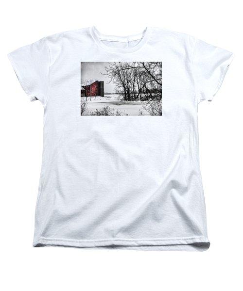 Alpine Barn Michigan Women's T-Shirt (Standard Cut) by Evie Carrier