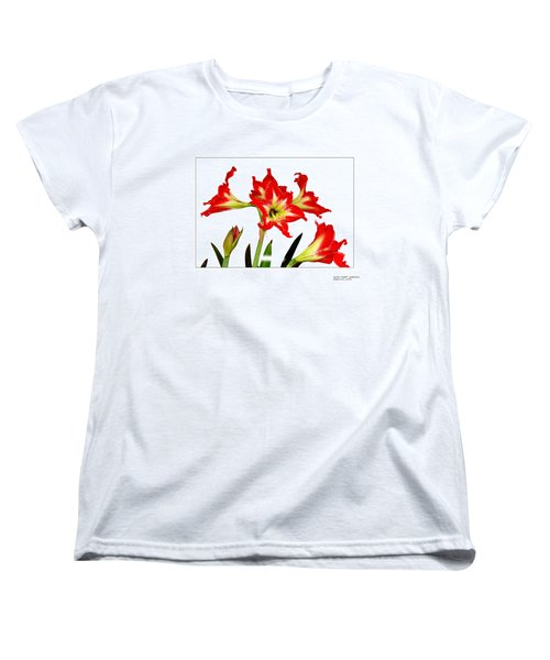 Women's T-Shirt (Standard Cut) featuring the photograph Amaryllis On White by David Perry Lawrence