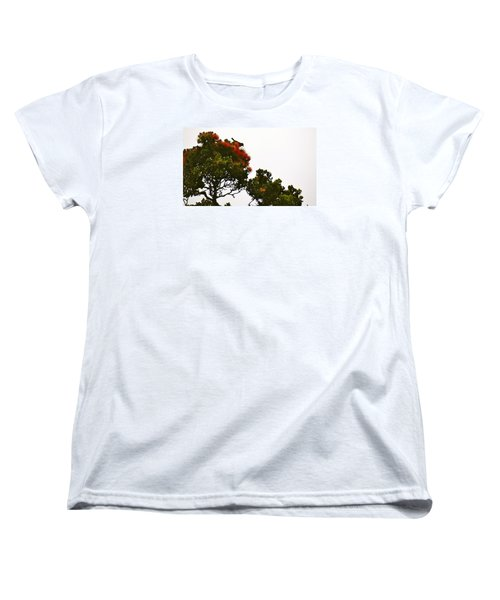 Apapane Atop An Orange Ohia Lehua Tree  Women's T-Shirt (Standard Cut) by Lehua Pekelo-Stearns