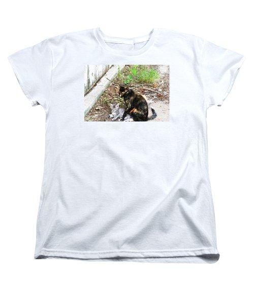 Barn Cats Women's T-Shirt (Standard Cut)