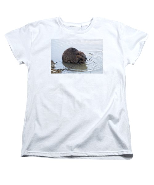 Beaver Chewing On Twig Women's T-Shirt (Standard Cut) by Chris Flees