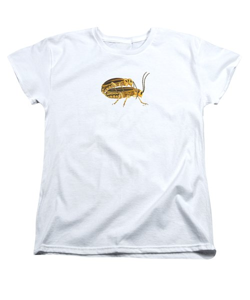 Chrysomelid Beetle Mating Pose Women's T-Shirt (Standard Cut) by Cindy Hitchcock