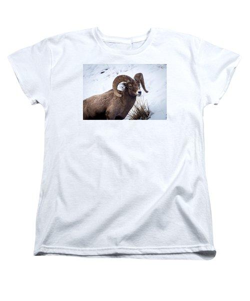 Bighorn Ram Women's T-Shirt (Standard Cut)