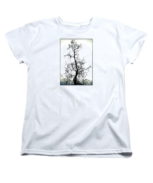 Women's T-Shirt (Standard Cut) featuring the photograph Bird In The Branches by Caitlyn  Grasso