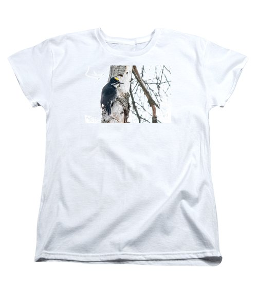 Black-backed Woodpecker Women's T-Shirt (Standard Cut) by Cheryl Baxter