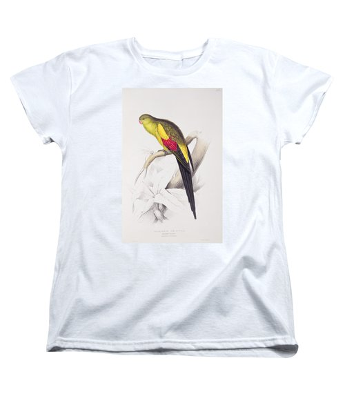 Black Tailed Parakeet Women's T-Shirt (Standard Cut) by Edward Lear