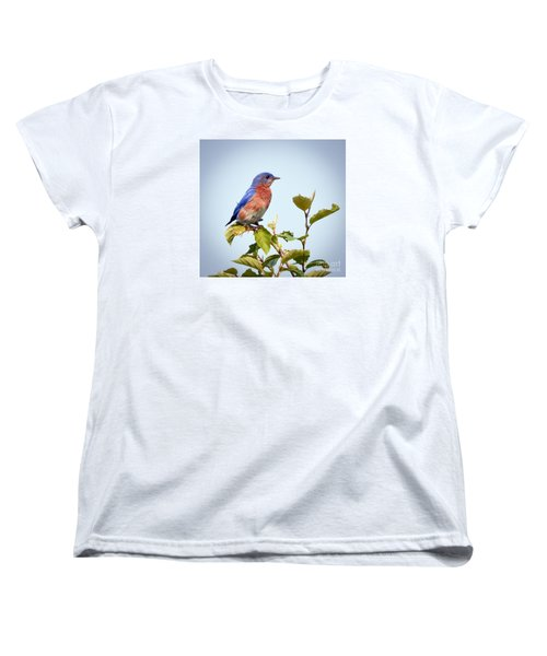 Women's T-Shirt (Standard Cut) featuring the photograph Bluebird On Top by Kerri Farley