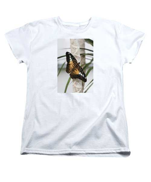 Brown Clipper Butterfly #2 Women's T-Shirt (Standard Cut) by Judy Whitton