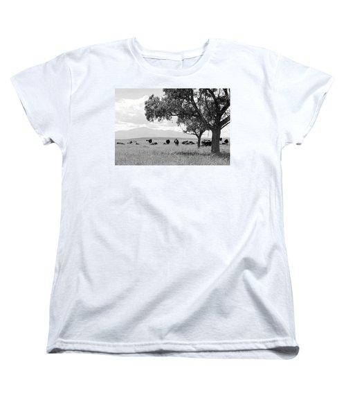 Cattle Ranch In Summer Women's T-Shirt (Standard Cut) by Clarice  Lakota