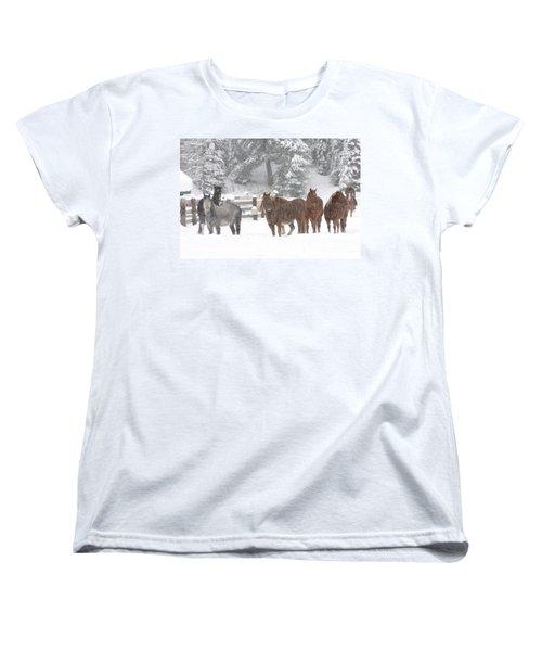 Cold Ponnies Women's T-Shirt (Standard Cut) by Diane Bohna