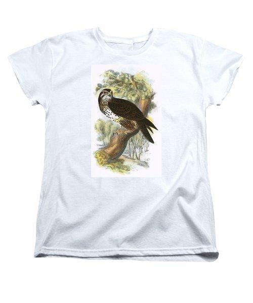 Common Buzzard Women's T-Shirt (Standard Cut) by English School