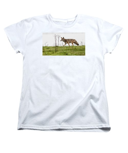 Women's T-Shirt (Standard Cut) featuring the photograph Coyote by Brian Williamson
