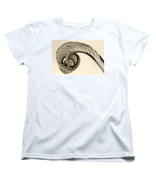Curled Women's T-Shirt (Standard Cut) by Melinda Ledsome