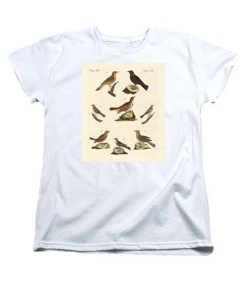 Different Kinds Of Larks Women's T-Shirt (Standard Cut) by Splendid Art Prints