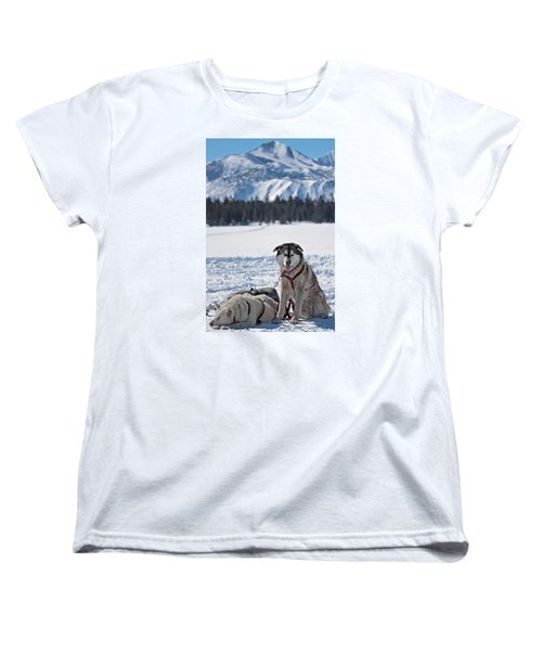 Dog Team Women's T-Shirt (Standard Cut) by Duncan Selby