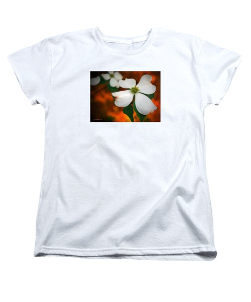 Dogwood Blossom Women's T-Shirt (Standard Cut) by Brian Wallace