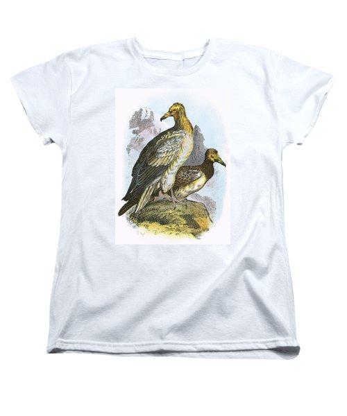 Egyptian Vulture Women's T-Shirt (Standard Cut) by English School