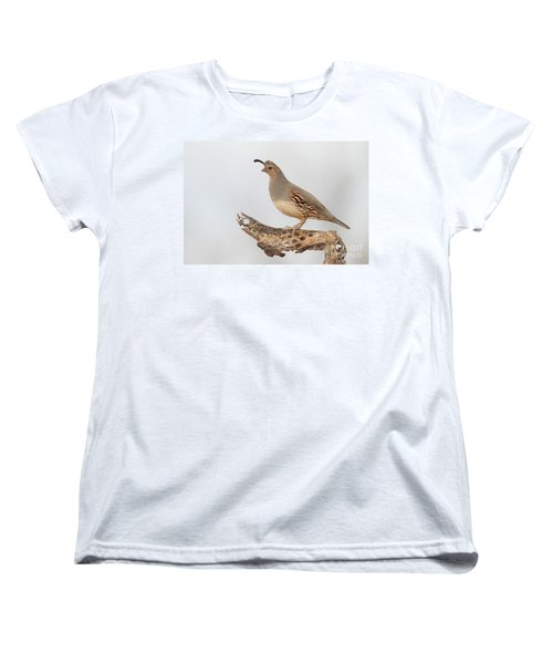 Female Gambel's Quail Women's T-Shirt (Standard Cut) by Bryan Keil