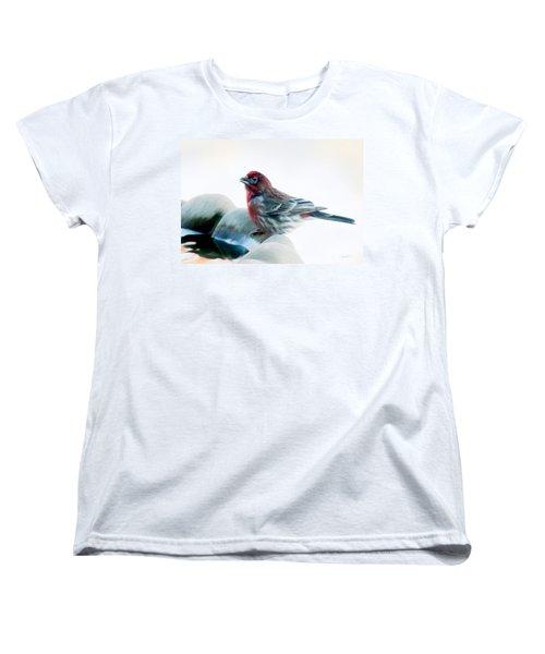 Finch Women's T-Shirt (Standard Cut) by Ann Lauwers