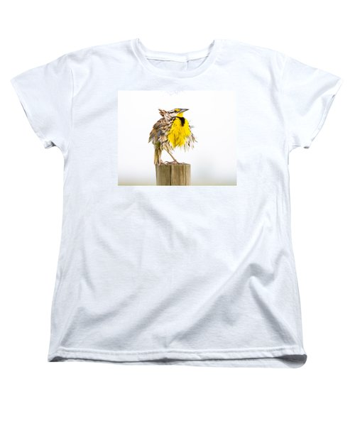 Flluffy Meadowlark Women's T-Shirt (Standard Cut) by Bill Swindaman