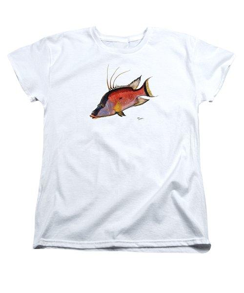Hogfish On White Women's T-Shirt (Standard Cut) by Steve Ozment