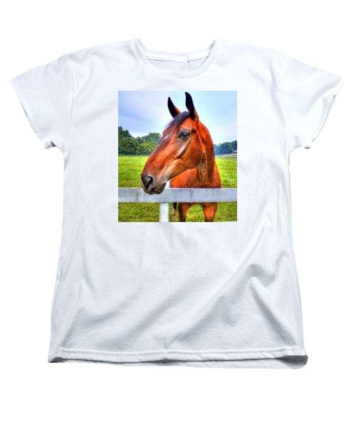 Horse Closeup Women's T-Shirt (Standard Cut) by Jonny D