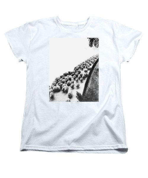 Hyde Park Sheep Flock Women's T-Shirt (Standard Cut) by Underwood Archives