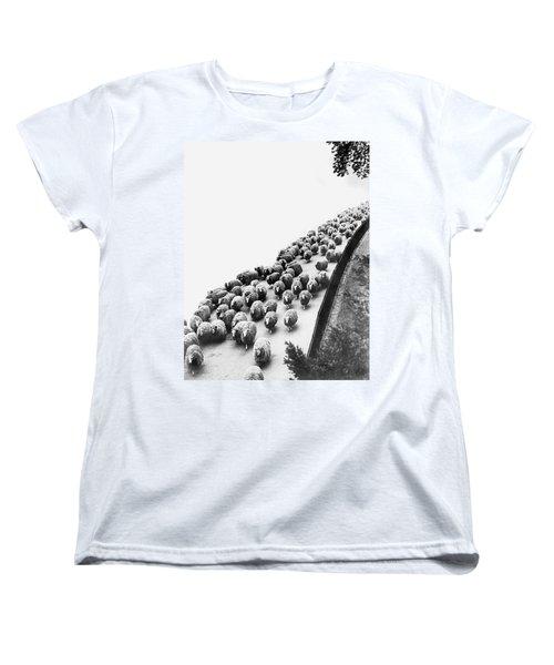 Hyde Park Sheep Flock Women's T-Shirt (Standard Cut)