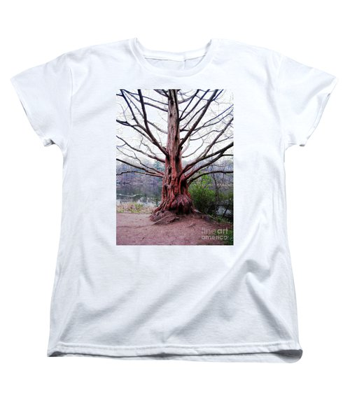 Women's T-Shirt (Standard Cut) featuring the photograph Magic Tree by Nina Silver