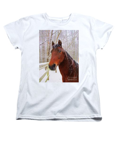 Majestic Morgan Horse Women's T-Shirt (Standard Cut) by Elizabeth Dow