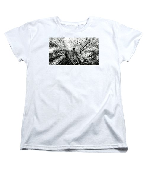 Women's T-Shirt (Standard Cut) featuring the photograph Maple Tree Inkblot by CML Brown