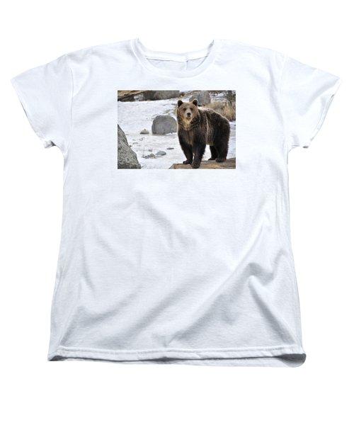 Montana Grizzly  Women's T-Shirt (Standard Cut) by Fran Riley