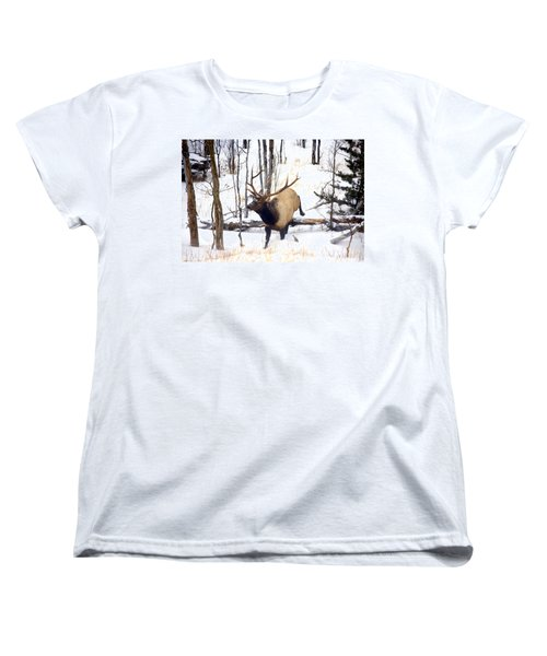 On The Move Women's T-Shirt (Standard Cut) by Mike  Dawson