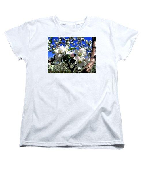 Orchard Ovation Women's T-Shirt (Standard Cut) by Will Borden