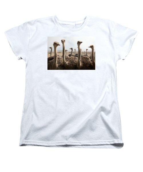 Ostrich Heads Women's T-Shirt (Standard Cut) by Johan Swanepoel