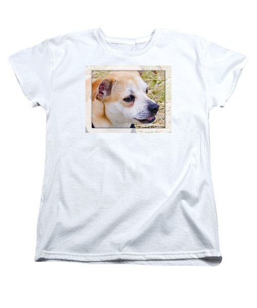 Pets Women's T-Shirt (Standard Cut) by Walter Herrit