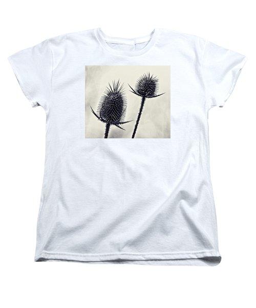 Prickly Women's T-Shirt (Standard Cut) by John Hansen
