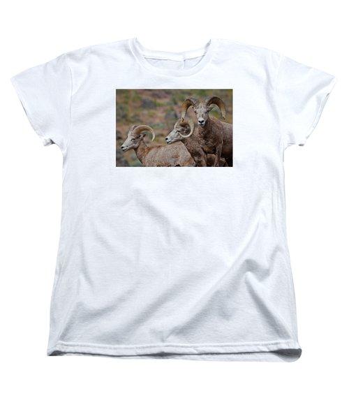 Rams In Three Women's T-Shirt (Standard Cut) by Athena Mckinzie