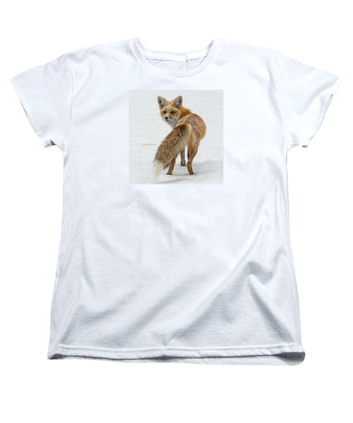 Red Fox Of Silver Gate Women's T-Shirt (Standard Cut) by Yeates Photography