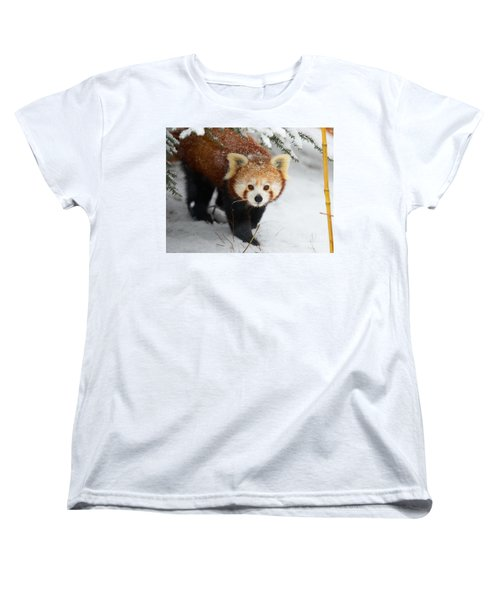 Red Panda In The Snow Women's T-Shirt (Standard Cut) by Nick  Biemans