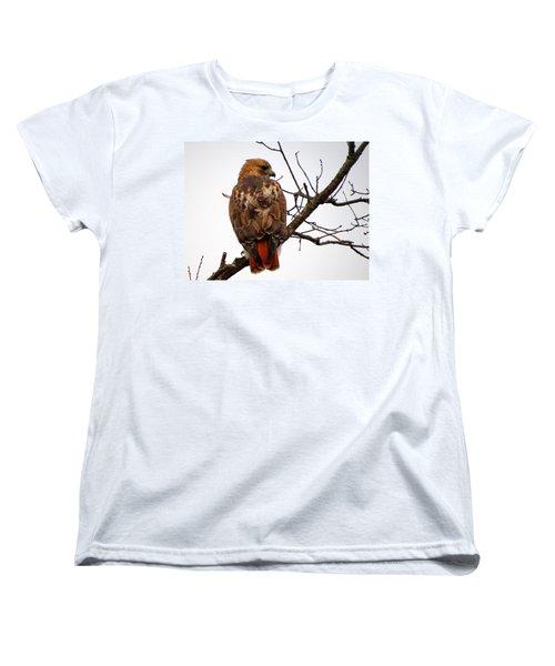Red Tail Hawk In Winter Women's T-Shirt (Standard Cut) by Dianne Cowen