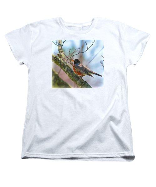 Robin Women's T-Shirt (Standard Cut)